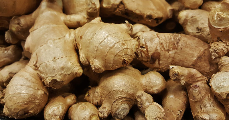 Scientists Find Ginger Fights Obesity