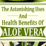 The Astonishing Uses And Health Benefits Of Aloe Vera