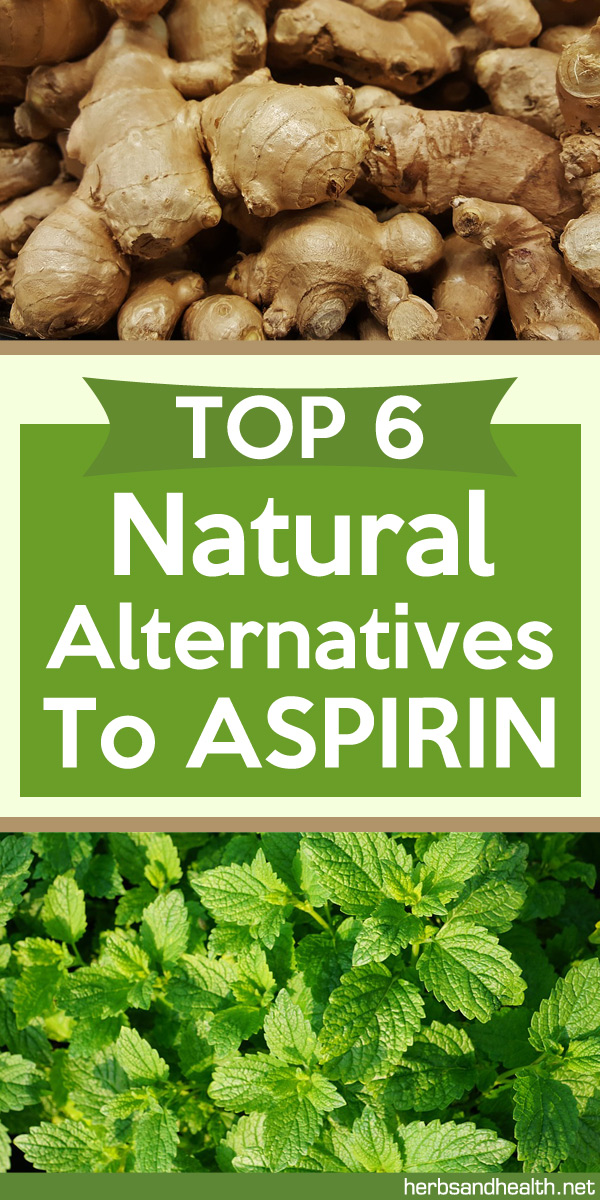 Top 6 Natural Alternatives To Aspirin