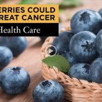 Science: Blueberries Demonstrated To Increase Effectiveness Of Cervical Cancer Therapy