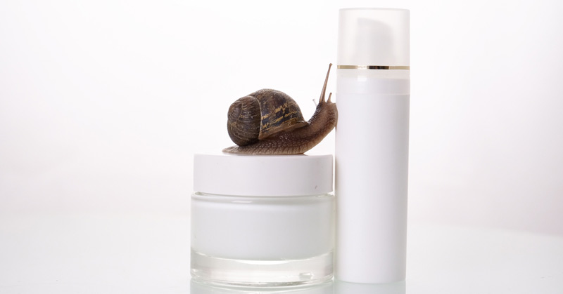 Snail Slime Skin Creams Becoming Popular In The United States