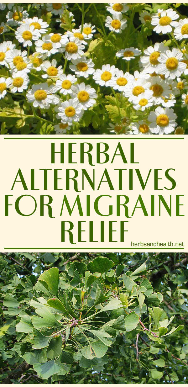 Herbal Alternatives For Migraine Relief