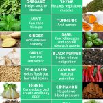 16 Healing Herbs and Spices
