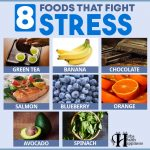 8 Foods That Fight Stress