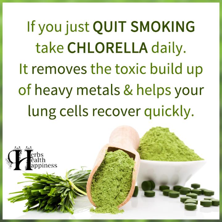 If You Just Quit Smoking Take Chlorella Daily