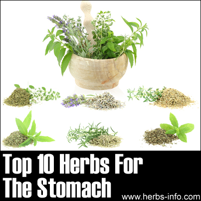 Herbs For Stomach