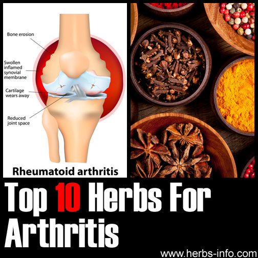 Herbs For Arthritis