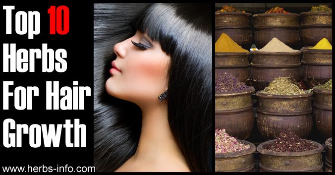 Top 10 Herbs For Hair Growth