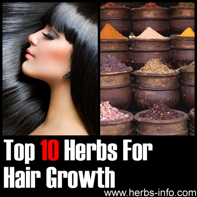 Herbs For Hair Growth