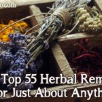 The Top 55 Herbal Remedies For Just About Anything