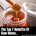 The Top 7 Benefits Of Raw Honey