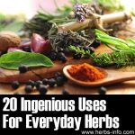20 Ingenious Uses For Everyday Herbs