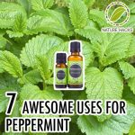 7 Awesome Uses For Peppermint