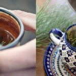 How To Make Pine Needle Tea