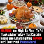 WARNING: You Might Be About To Eat Thanksgiving Turkey That Contains Insane Size-Enhancing Drug BANNED In 29 Countries!