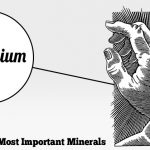 Magnesium – The Missing Link To Better Health