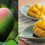 Mangoes Might Be The Ultimate Superfood For Diabetes: New Science Finds They Control Both Blood Sugar And Blood Pressure