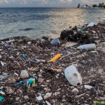 Microplastics In The Seas Now Outnumber Stars In Our Galaxy