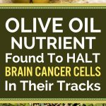 Olive Oil Nutrient Found To HALT Brain Cancer Cells In Their Tracks