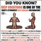 Deep Breathing Is One Of The Body's Strongest Self-Healing Mechanisms