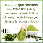 If You Just Quit Smoking Take Chlorella Daily