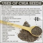 Uses Of Chia Seeds