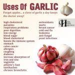Uses Of Garlic