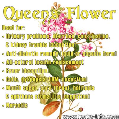 Queen's Flower