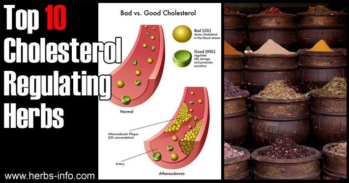 Herbs For Regulating Cholesterol