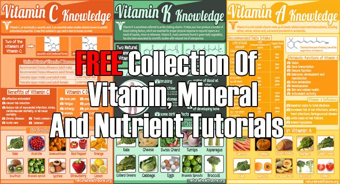 healthy eating tutorials